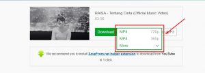 Cara Download Video Youtube Menggunakan SaveFrom.net
